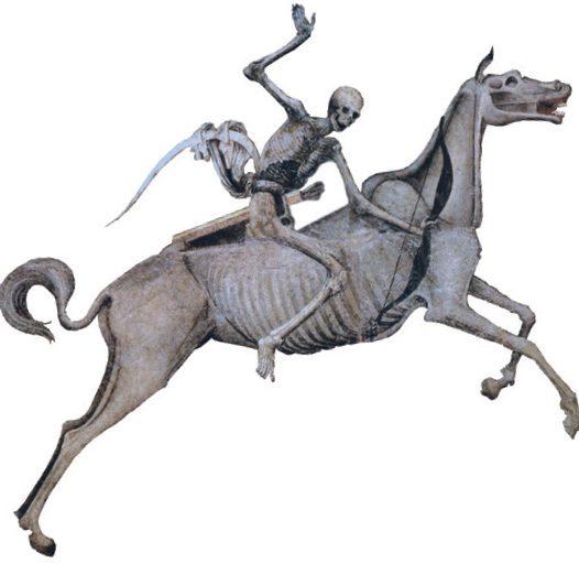 Quando giunse Jersinia Pestis, la morte a cavallo